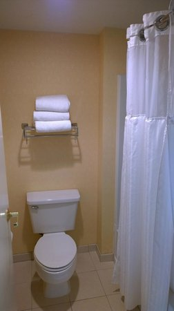 DoubleTree Suites by Hilton Hotel Nashville Airport: Bathroom