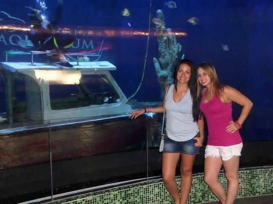 Interactive Aquarium : Aquarium  Plaza Isla
