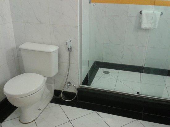 Novotel Sao Paulo Center Norte: Banheiro