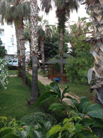 Baytan Hotel: Bahçe