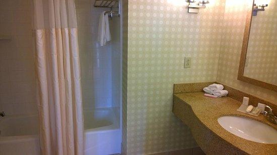 Hilton Richmond Downtown: Bathroom