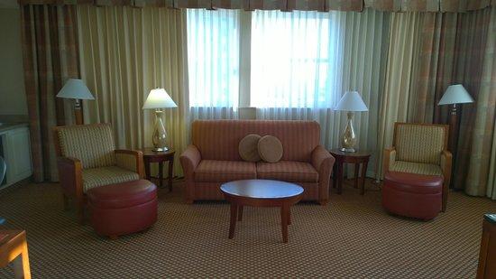 Hilton Richmond Downtown: Living room