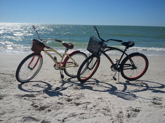 Beach Bum Bike Rentals