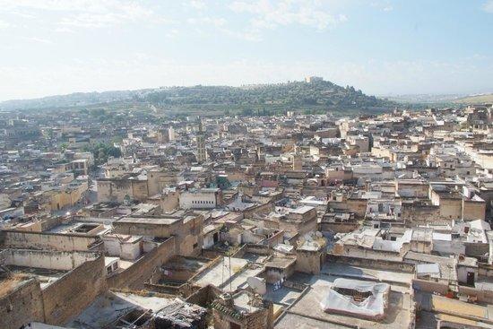 dar gnaoua: Vue de la terrasse