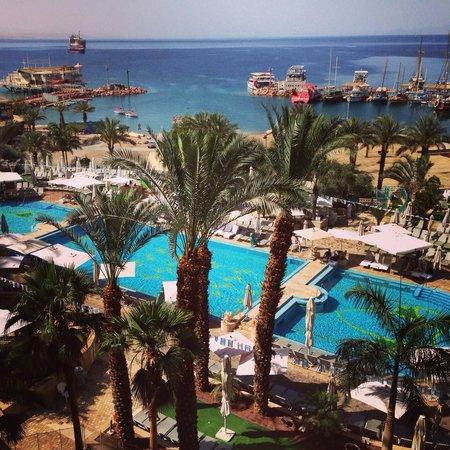Queen of Sheba Eilat : Vu de la chambre , la piscine