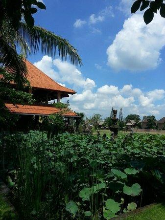 Sahadewa Resort & Spa: Vista