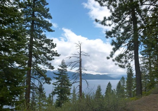 Hyatt Regency Lake Tahoe Resort, Spa and Casino: wonderful hike ten minutes of the hotel