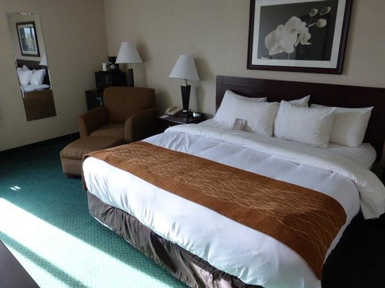 Comfort Inn Northeast: King bed