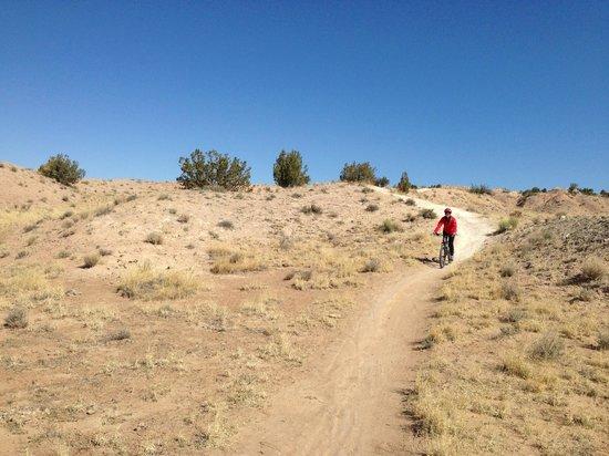 white mesa tour picture of new mexico mountain bike tours