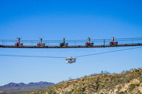 Wild Canyon Adventures: Los Cabos Canyon Bridge and the glass floor Gondola