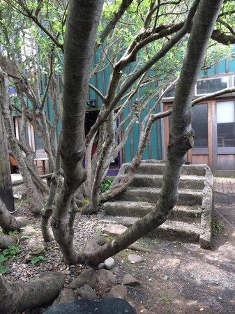 Courtyard of Cafe mundo