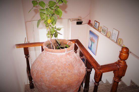 CG Guesthouse : inside