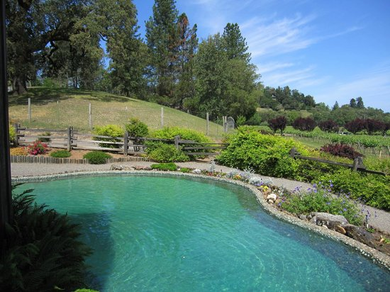 Mill Creek Vineyards and Winery: Mill pond