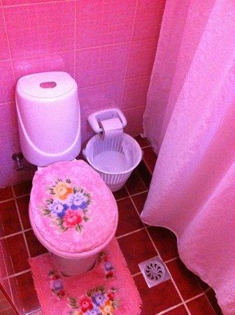 La Casa Amador: The pink bathroom!