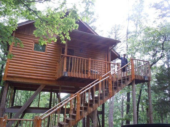 Welcome greeting on our treehouse picture of treehouse for Tree house cabins arkansas