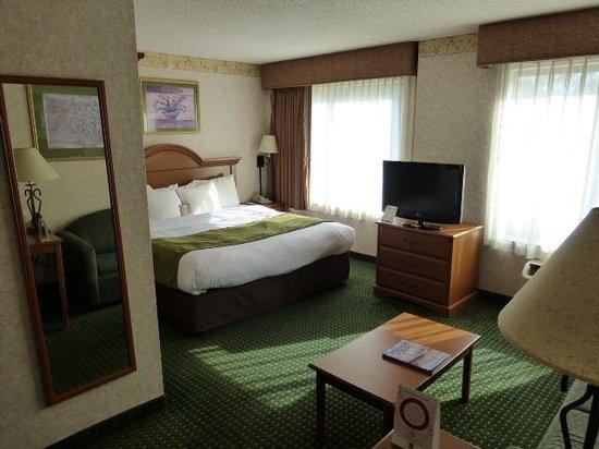 كومفورت سويتس ويلمينجتون: Room view