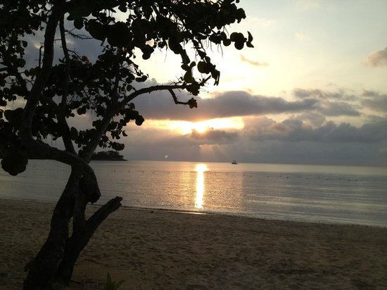 Couples Negril : Beautiful Sunsets on a Beautiful Beach