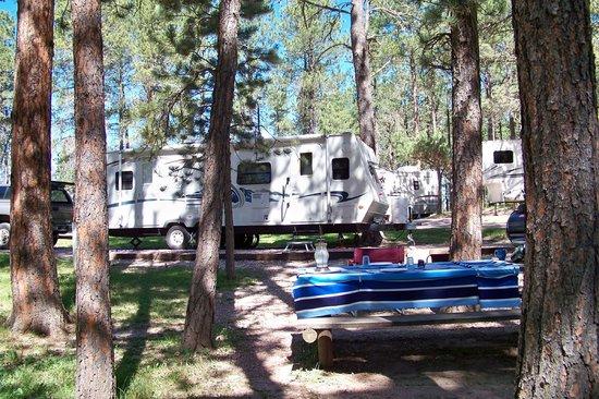 Big Pine Campground: Site 52