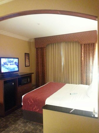 Comfort Suites Oceanside Marina : Standard room