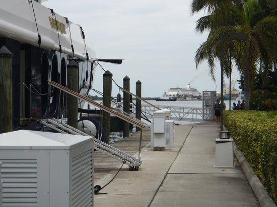 Hilton Fort Lauderdale Marina: marina