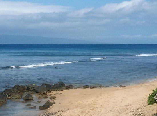 Hyatt Regency Maui Resort and Spa : Strolling the beach.