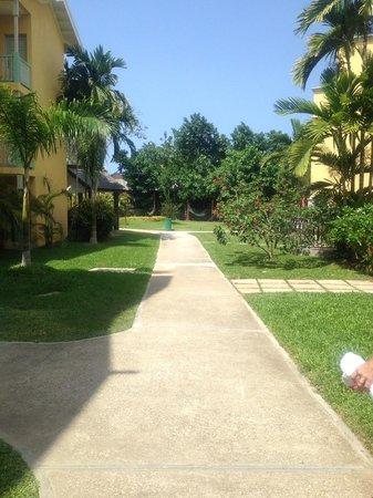Jewel Paradise Cove Resort & Spa Runaway Bay, Curio Collection by Hilton : Lush Greenery