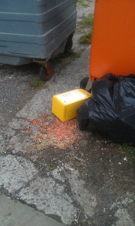 Brooklyn Hotel: food spilling on to ground in car park