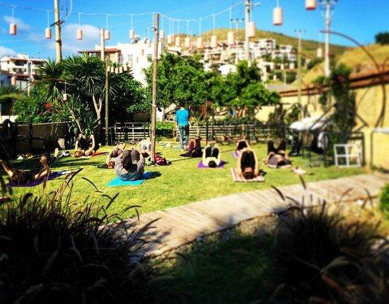 La Brezza Suite & Hotel: bahçede yoga keyfi