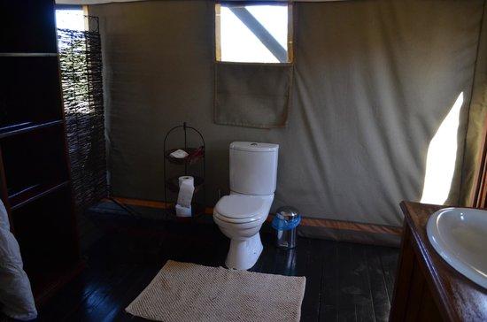 Springbok Lodge: W/C Bathroom behind the bed