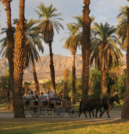 Furnace Creek Inn and Ranch Resort: View at Furnace Creek Ranch
