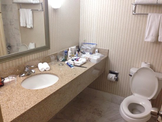 Ramada Plaza Atlanta Downtown Capitol Park: Bathrooms are nice!