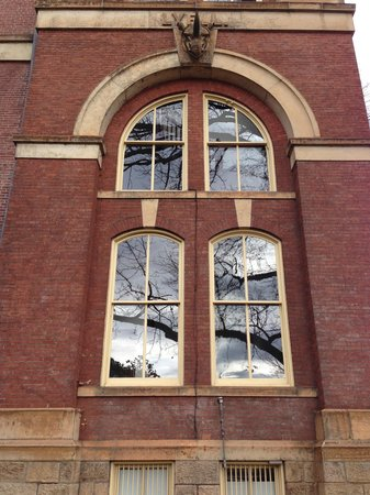 University of Virginia: Bela arquitetura...