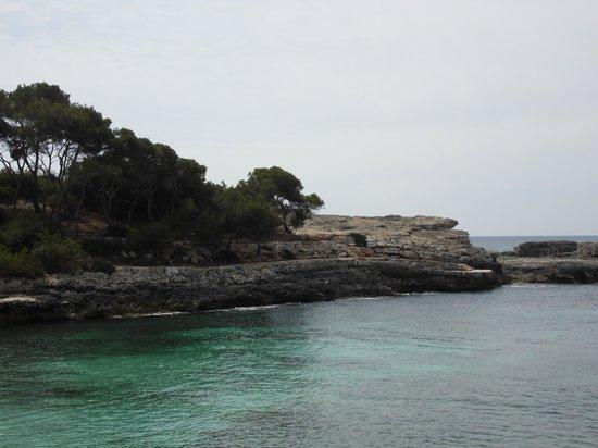 IBEROSTAR Club Cala Barca: Vue de la côte depuis la plage crique