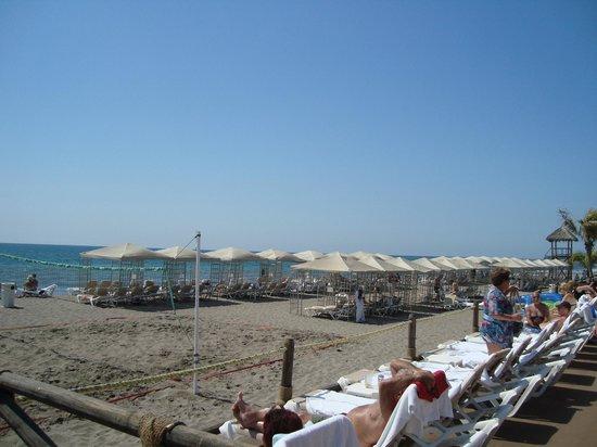Velas Vallarta Suite Resort : Lots of cabanas on beach