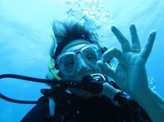 Centre de plongee, Marina Gaviota a Cayo Santa Maria : OK