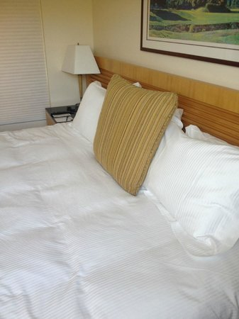 Eurobuilding Hotel and Suites Caracas: cama king size