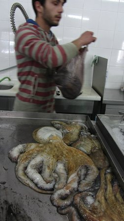 Mercado Do Peixe: дары Атлантики