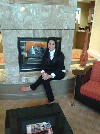 Hampton Inn & Suites Annapolis: Lobby