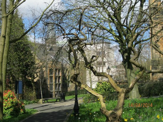 University of Glasgow: In the university grounds