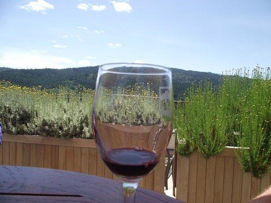 Sterling Vineyards : Enjoy the Cab