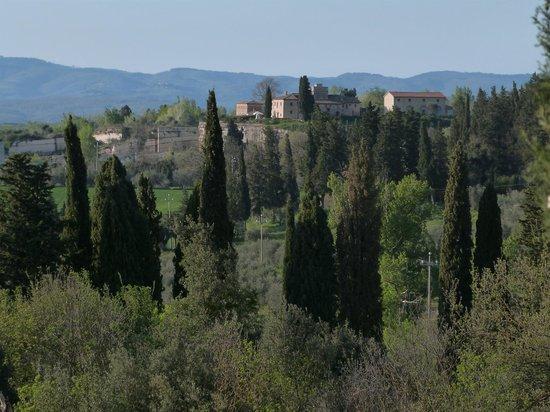 Aia Vecchia di Montalceto : view from the yard