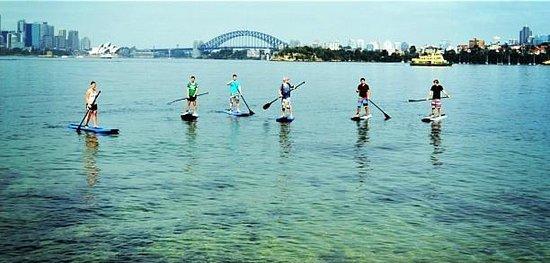 Sydney Scenic SUP: Group Tour