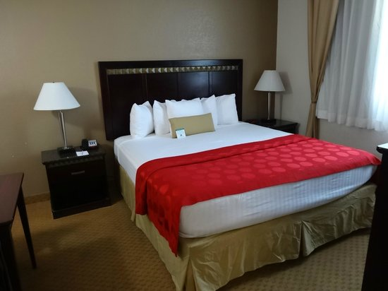 Ramada San Diego Airport: Very comfy King sized bed, nice linens