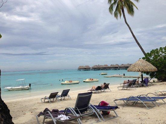 Sofitel Moorea Ia Ora Beach Resort : The Beach