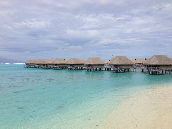 Sofitel Moorea Ia Ora Beach Resort : View from the beach