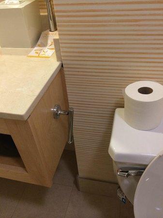 Tropicana Las Vegas - A DoubleTree by Hilton Hotel: Broken toilet paper holder