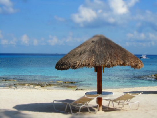 Presidente Inter-Continental Cozumel Resort & Spa: beach at our hotel