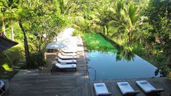 Komaneka at Bisma: Resort top pool