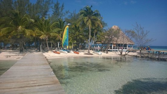 Coco Plum Island Resort: View from Coco Plum dock