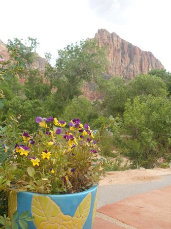 Zion Canyon Brew Pub : View from our table